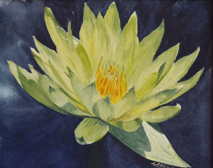 water lilly 1, 6x9