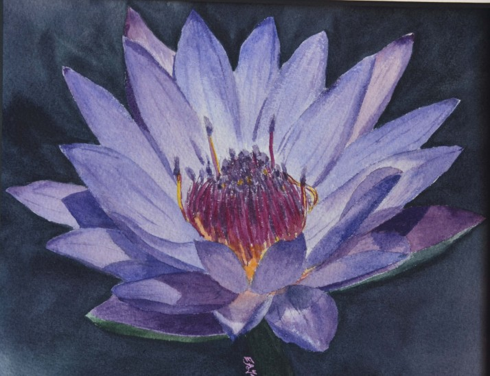 water lilly 2, 6x9