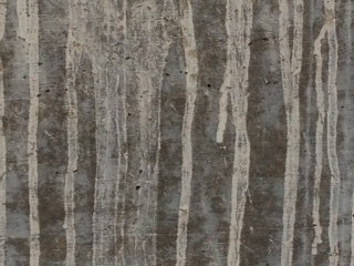 Looks like aspen tree trunks...just streaks on a concrete slab.