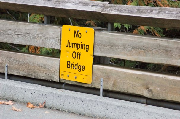 """This is evidence of ignoring social psychology...now some would actually """"jump off"""" the bridge."""